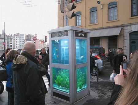 aquariumpb03
