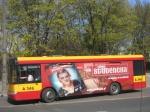 polishbus5